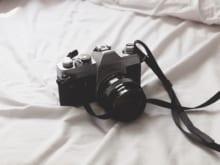Nikonのミラーレス一眼カメラが人気な理由|おすすめモデル7選