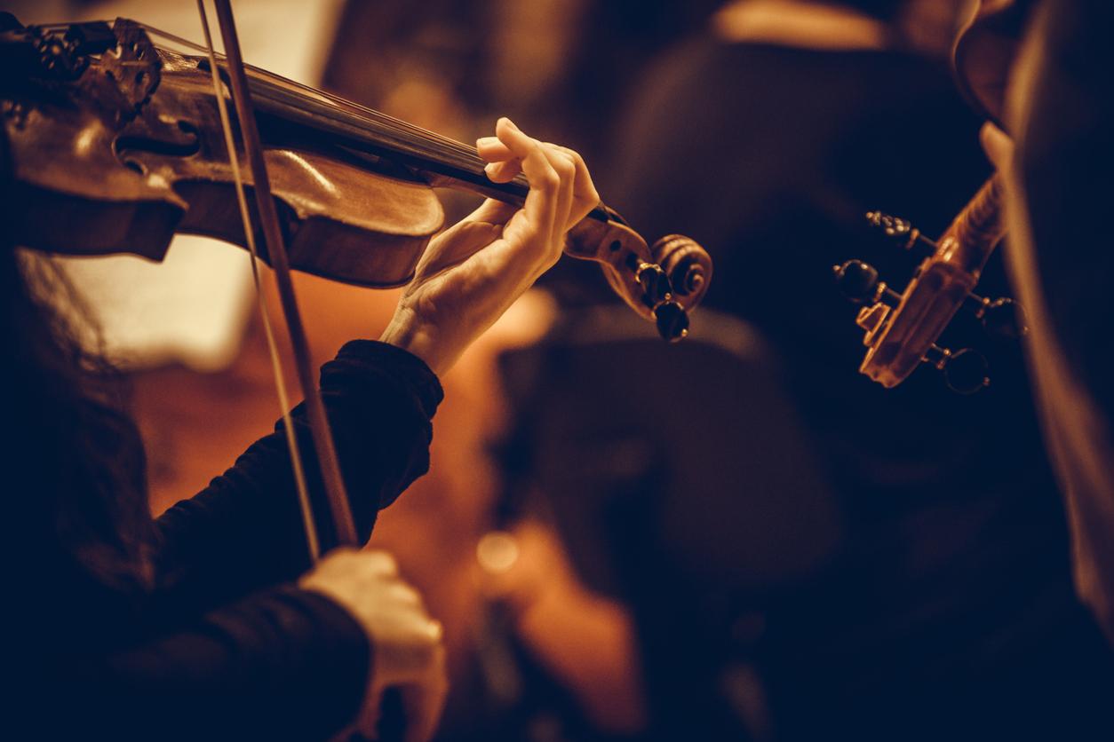バイオリンメーカーで人気なのはどこ?タイプ別おすすめモデルも紹介