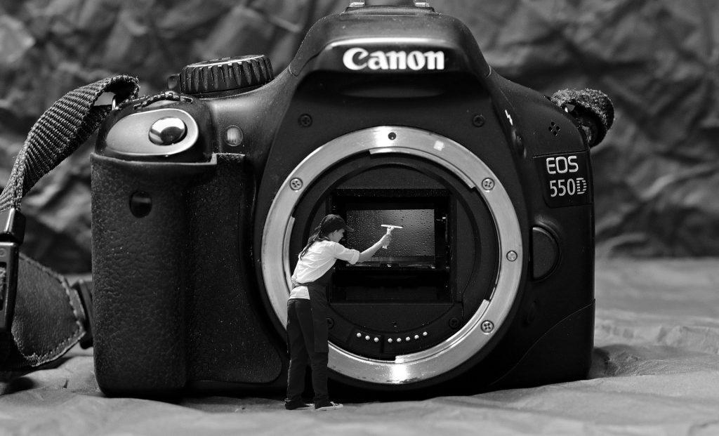 初心者のカメラ選びはAPS-C機が狙い目!APS-Cの基礎知識とおすすめ機種
