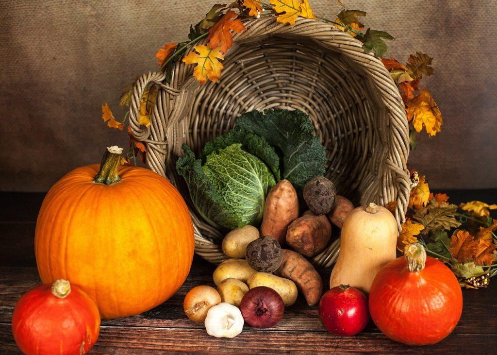 家庭菜園初心者でも簡単!秋冬におすすめの野菜7選と育てるコツ