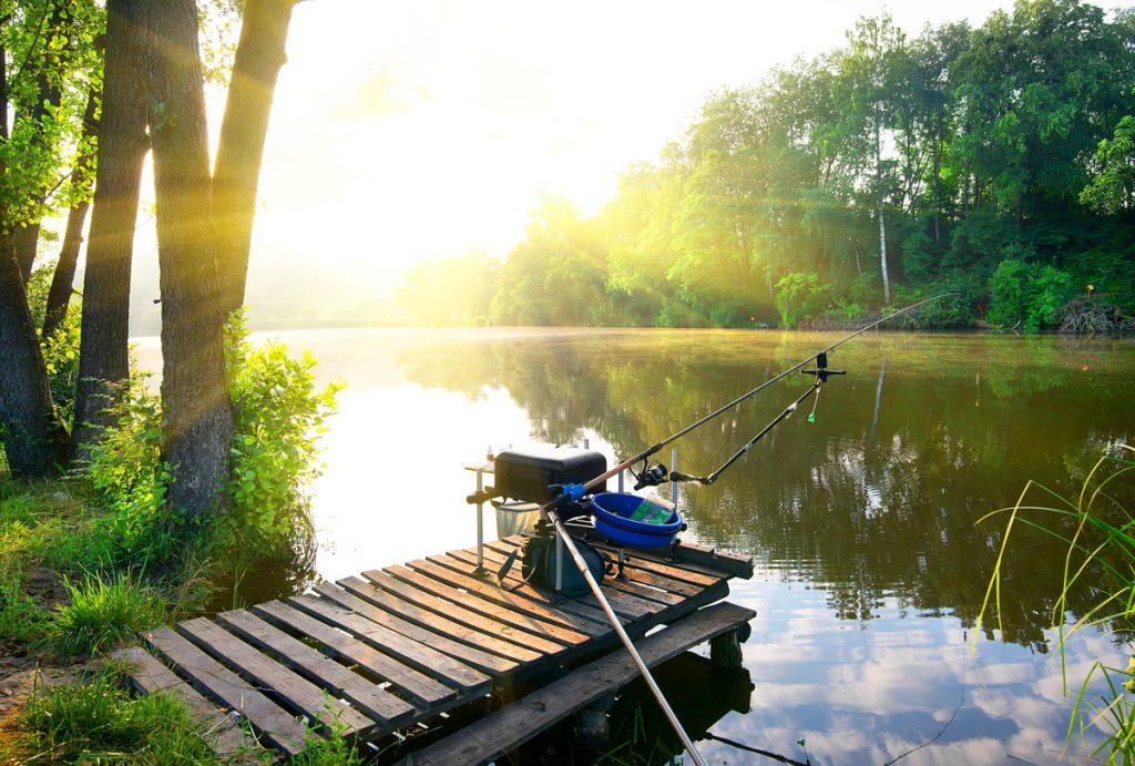 初心者として釣りをするときに知っておきたいポイントを解説